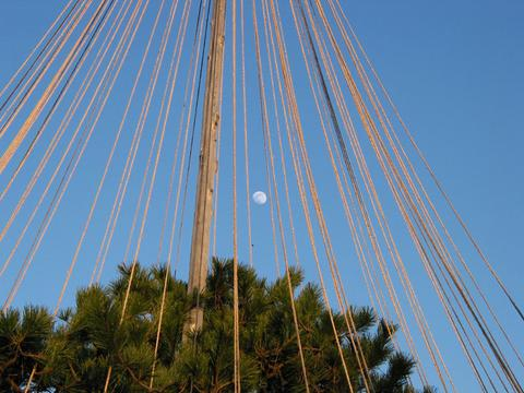 雪吊の間から見える月