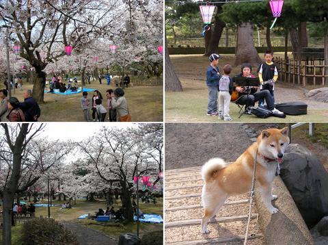 小松市芦城公園