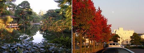 芦城公園、紅葉と月