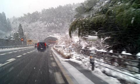福井県は大雪