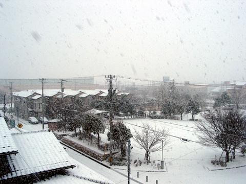 1月26日の雪