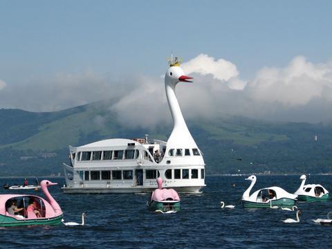スワン観光船にスワンボートにホンモノスワン
