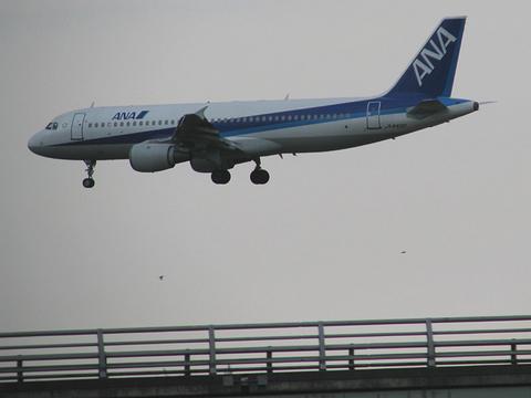 着陸直前のANAエアバス