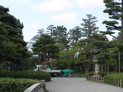 芦城公園のお手入れ