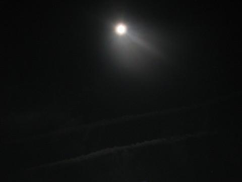 十五夜お月さま
