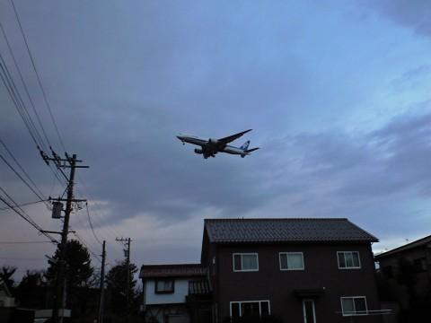 ANA B-777