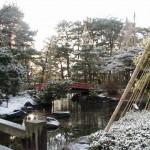1月25日 芦城公園