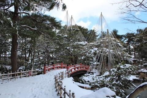 芦城公園の雪吊