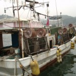 烏賊釣り漁船